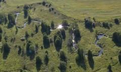 Беларусь, агрометеорология, посевная, атмосферные осадки, почва, полевые работы, урожай, урожайность, Белгидромет